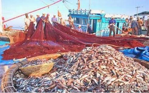 Báo động tình trạng khai thác thủy sản kiểu tận diệt ở Quảng Bình