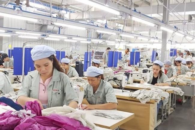 Bảo hiểm xã hội tỉnh: Kịp thời thực hiện các chính sách hỗ trợ người lao động, doanh nghiệp khó khăn do Covid-19
