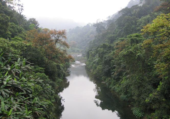 Bảo tồn đa dạng sinh học rừng Động Châu-khe Nước Trong: Giữ gìn quà tặng thiên nhiên cho mai sau