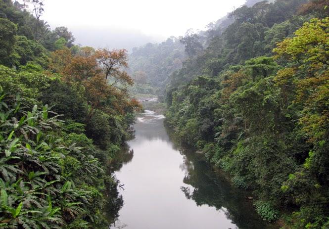 Bảo vệ đa dạng sinh học rừng Động Châu-khe Nước Trong