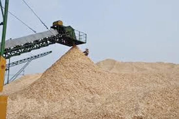 Cảnh báo nguy cơ cháy, nổ từ các cơ sở sản xuất gỗ bóc tách ván và gỗ dăm