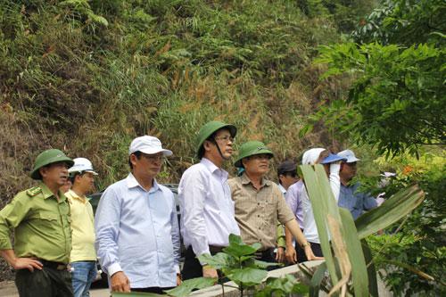 Chủ tịch UBND tỉnh kiểm tra công tác quản lý và bảo vệ rừng tại khu vựcĐộng Châu - Khe nước Trong tại xã Kim Thủy