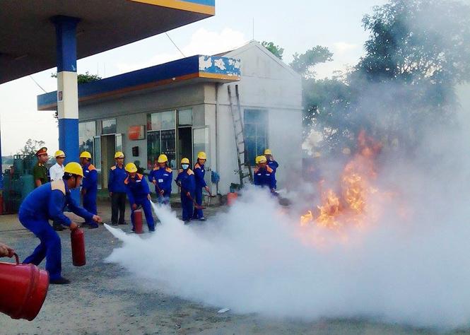 Chuyển biến trong hoạt động kinh doanh xăng dầu và gas hóa lỏng