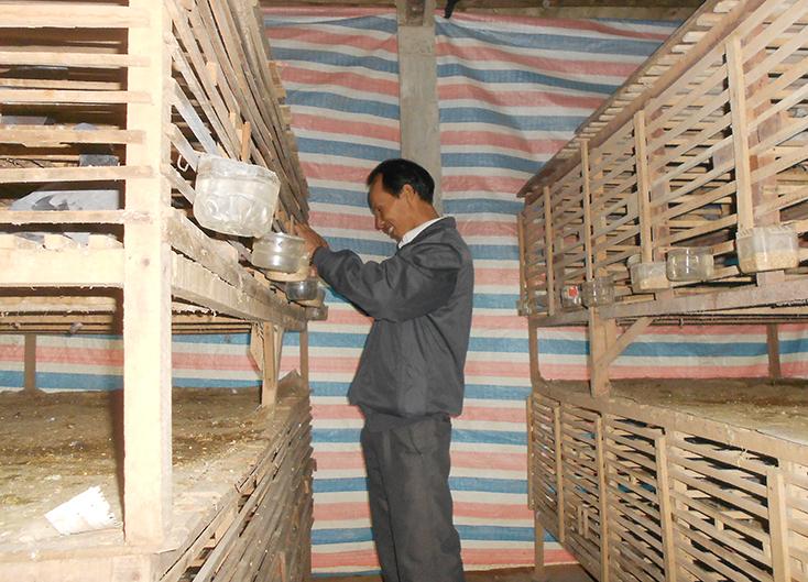 Cựu chiến binh huyện Lệ Thủy: Giúp nhau phát triển kinh tế, xóa đói giảm nghèo
