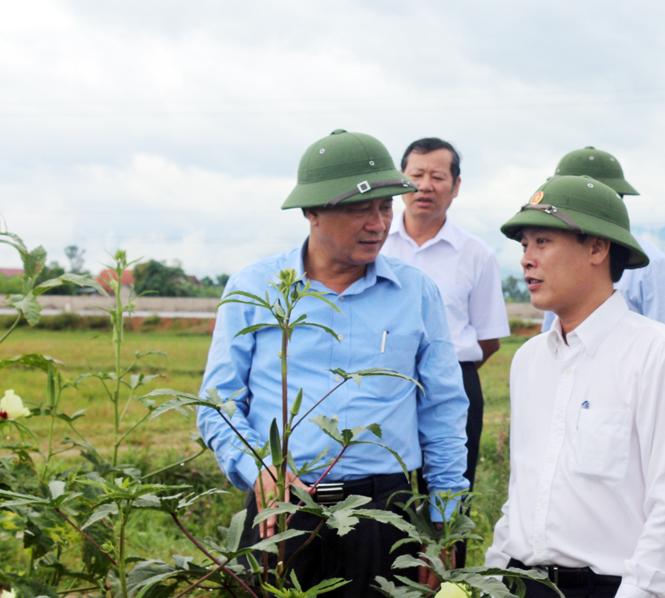 Đẩy mạnh áp dụng khoa học công nghệ trong sản xuất nông nghiệp nhằm ứng phó với biến đổi khí hậu