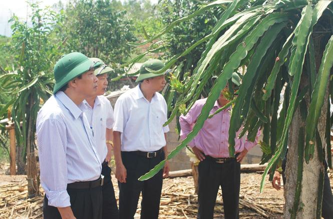 Đồng chí Phó Bí thư Thường trực Tỉnh ủy làm việc tại huyện Quảng Ninh