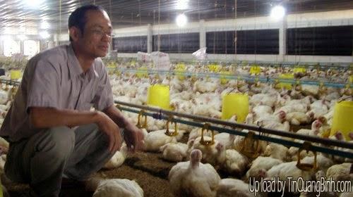 Formosa muốn đầu tư nuôi heo, gà ở Quảng Bình