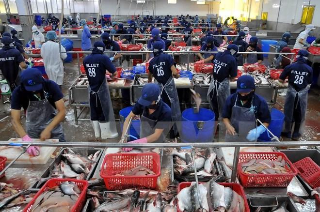 Gia nhập Cộng đồng kinh tế ASEAN: Chủ động từ doanh nghiệp