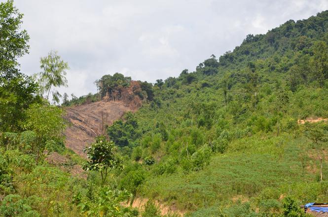 Giao đất và sử dụng đất lâm nghiệp vùng đồng bào dân tộc thiểu số: Vẫn còn những ách tắc