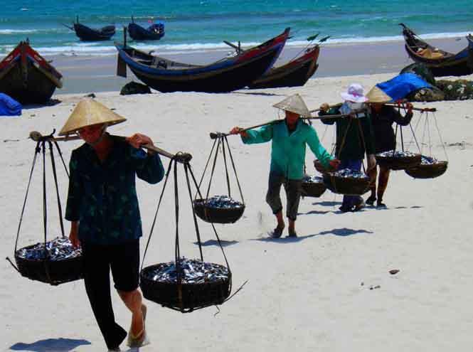 Hải Ninh - Làng cát bền dai - Bài 1: Chuyện bên chân sóng