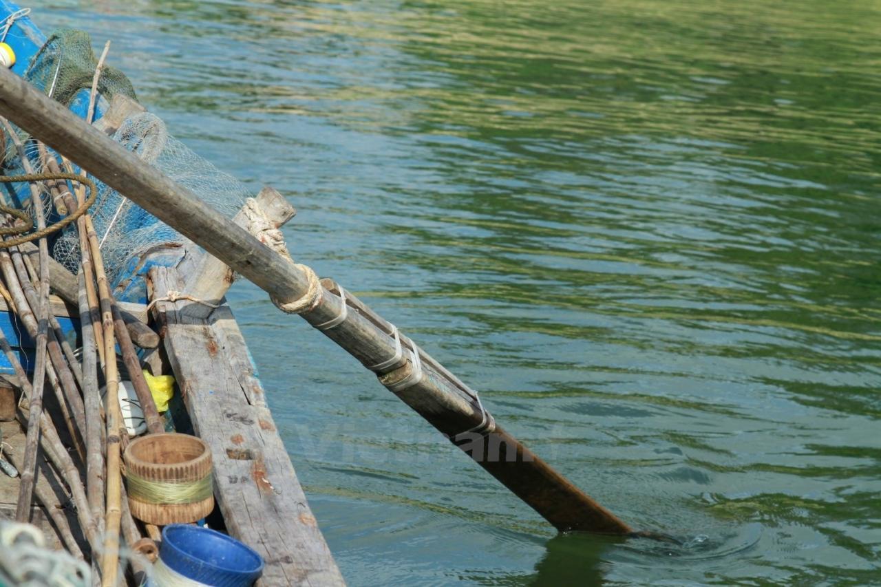 Háo hức trải nghiệm món đẻn biển độc đáo ở Quảng Bình