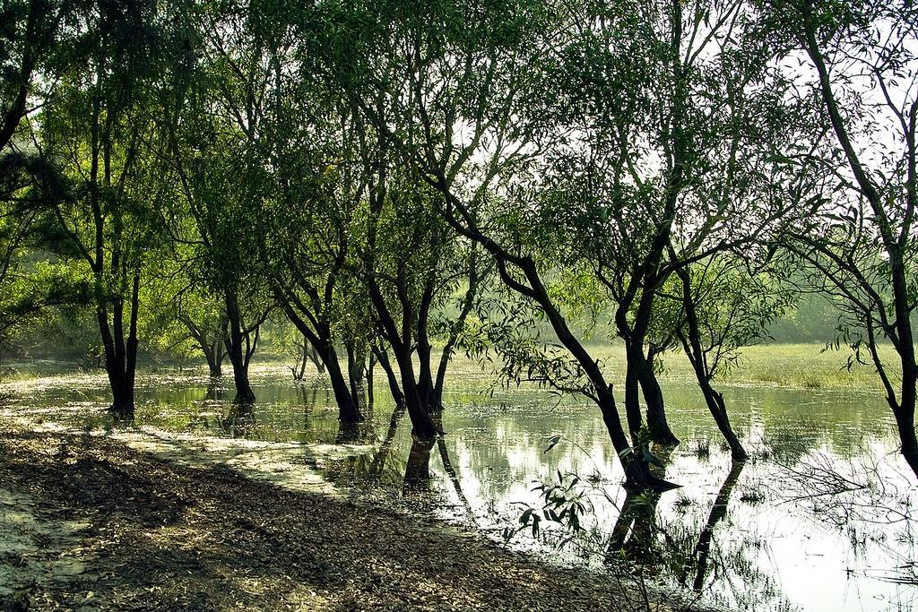 Hồ Bàu Tró- Đi tìm nguồn gốc cái tên
