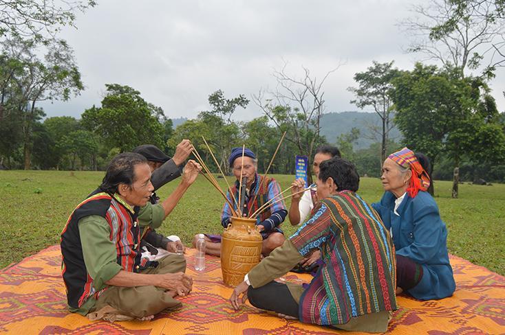 """""""Hồi sinh"""" giống lúa nếp quý và lễ hội cơm mới của người Bru-Vân Kiều"""