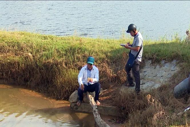 Khẩn trương khắc phục đất nông nghiệp bị nhiễm mặn