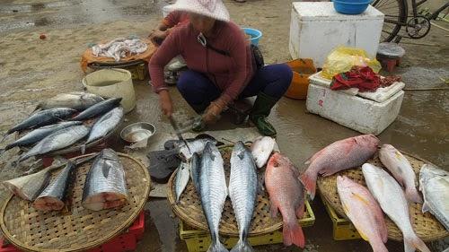 Lao xao chợ cá