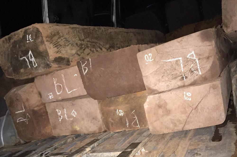 Minh Hóa: Bị phát hiện chở gỗ lậu, lâm tặc lao thẳng xe ô tô vào xe kiểm lâm
