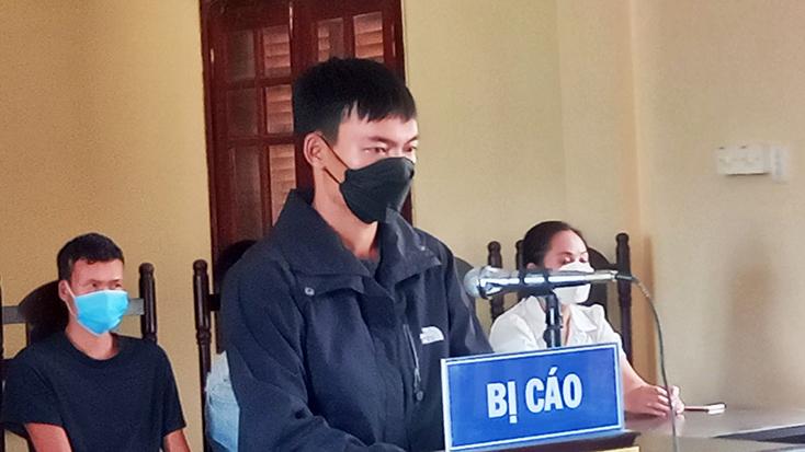 Minh Hóa: Đối tượng hủy hoại rừng lĩnh án 18 tháng tù