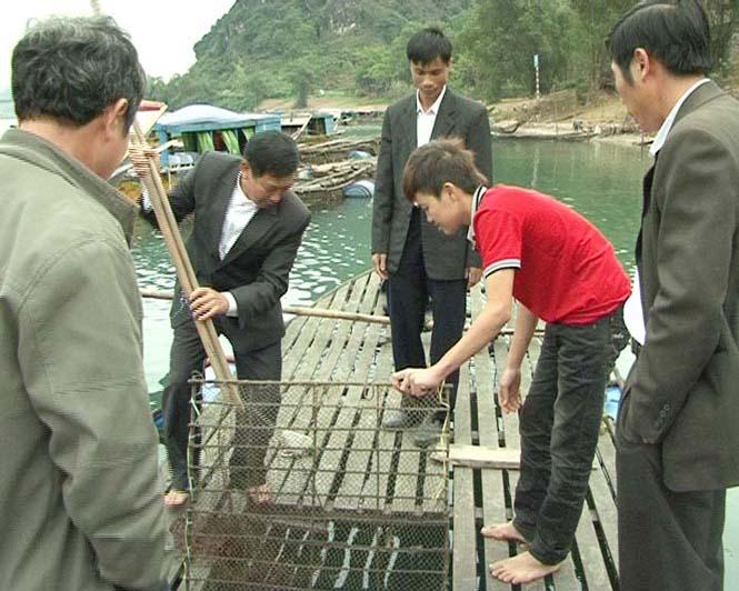 Ngân hàng CSXH huyện Bố Trạch: Đồng hành cùng người dân
