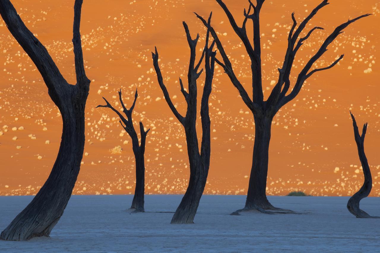 Những cảnh đẹp siêu thực phải ngắm trước khi chết