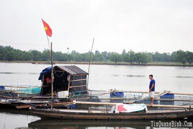 Nuôi cá lồng, hướng đi mới cho nông dân Duy Ninh