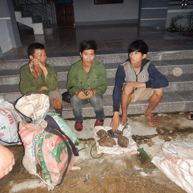 Phát hiện 3 vụ săn bắt động vật hoang dã trái phép