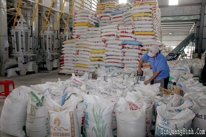 Philippines mua 100.000 tấn gạo của Việt Nam để dự trữ