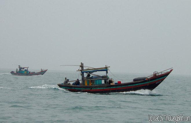 Quảng Bình: Bắt nhiều tàu cá khai thác tận diệt thủy sản
