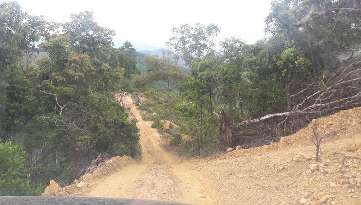 Quảng Bình: Điều tra vụ gần 45ha rừng phòng hộ bị phá trắng ở Bà Đà