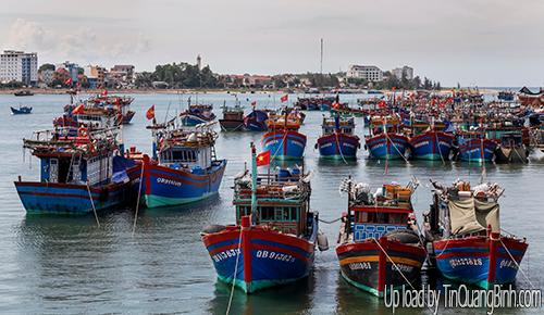 Quảng Bình: Số lượng tàu cá đóng mới, cải hoán tăng mạnh