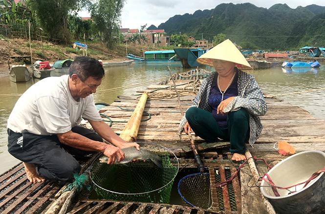 Quảng Bình tạo việc làm cho gần 14.000 lao động trong lĩnh vực du lịch