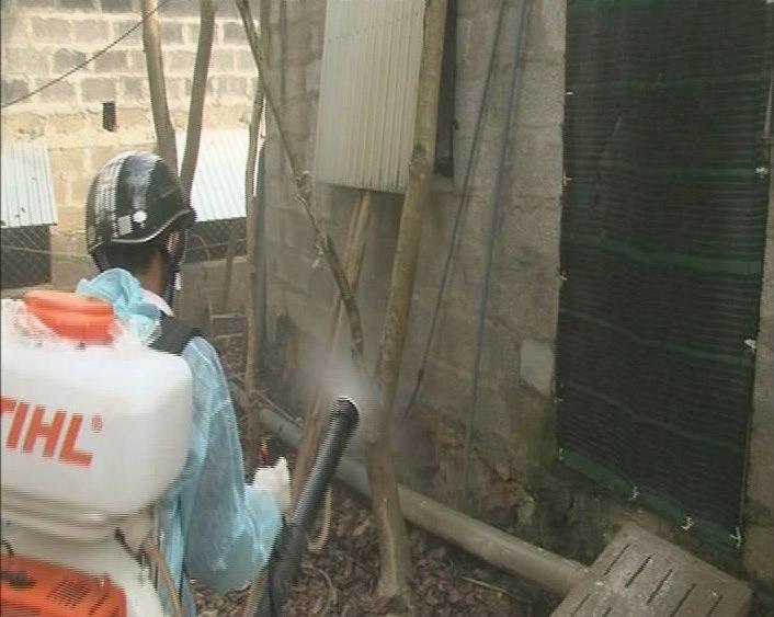 Quảng Bình tích cực phòng, chống bệnh dịch tả lợn châu Phi