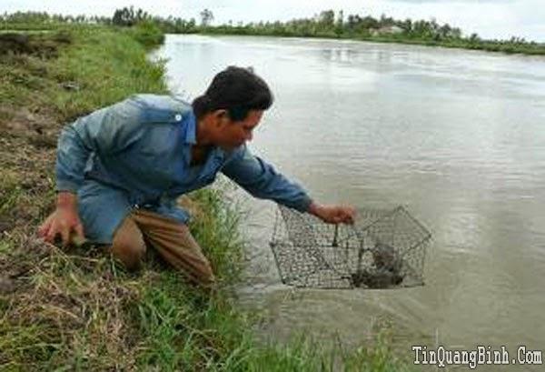 Quảng Ninh: Sản lượng khai thác và nuôi trồng thủy sản đạt trên 895 tấn