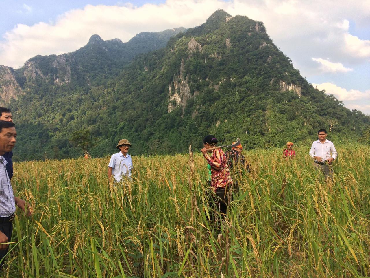 Quảng Ninh: Thực hiện các chính sách hỗ trợ phát triển kinh tế