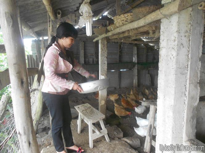 Tăng thu nhập nhờ mô hình kinh tế trang trại