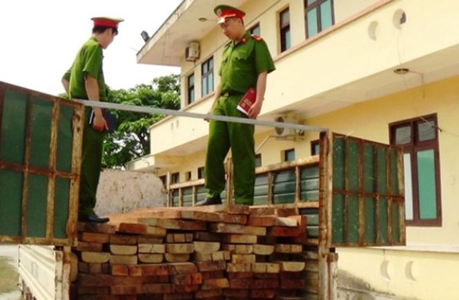 Thị xã Ba Đồn: Xử lý 35 vụ vi phạm lâm luật