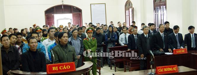 Tiếp tục hoãn phiên tòa xét xử vụ việc liên quan đến gỗ huê tại VQG Phong Nha-Kẻ Bàng