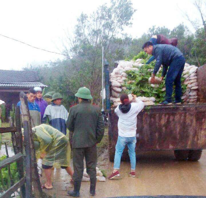 Trạm Kiểm lâm Hóa Sơn (Minh Hóa): Điểm sáng bảo vệ và phát triển rừng