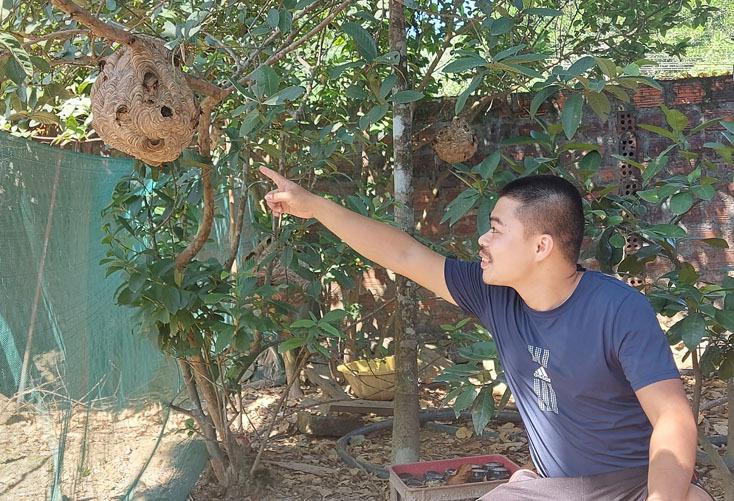 Tuyên Hóa: Bé 5 tuổi nguy kịch do bị ong vò vẽ đốt