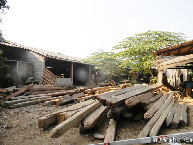 Tuyên Hoá: Đình chỉ hoạt động các xưởng cưa trái phép