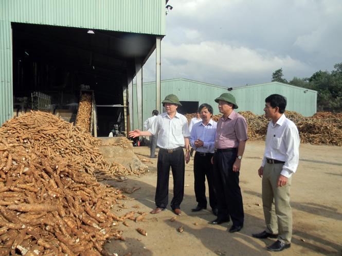 UBND tỉnh làm việc với Công ty CP tư vấn và đầu tư Long Giang Thịnh