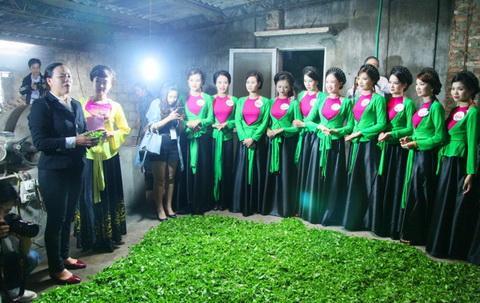 VIDEO: Ngắm nhan sắc 'Người đẹp xứ Trà' 2015