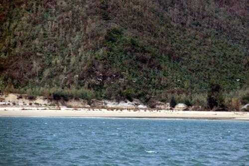 Vũng Chùa - đảo Yến, nơi an táng Đại tướng Võ Nguyên Giáp