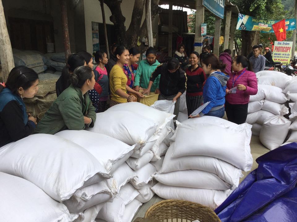 Xuất gạo dự trữ quốc gia cho tỉnh Quảng Bình